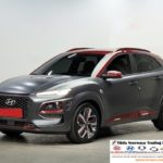 2019 Hyundai Kona 1.6T 4WD Iron Man Edition